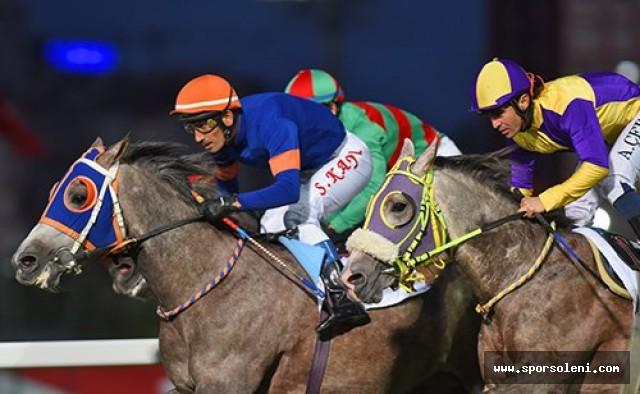 At Yarışları Flat ( DÜZ YARIŞ )
