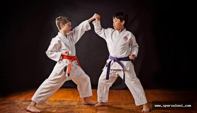 Karate Sporu Nedir?
